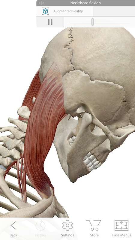 1599876902 43 Human Anatomy Atlas 2021 MOD Free Shopping