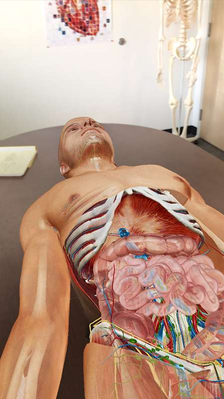 1599876902 635 Human Anatomy Atlas 2021 MOD Free Shopping