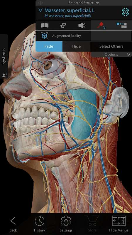 Human Anatomy Atlas 2021 MOD Free Shopping