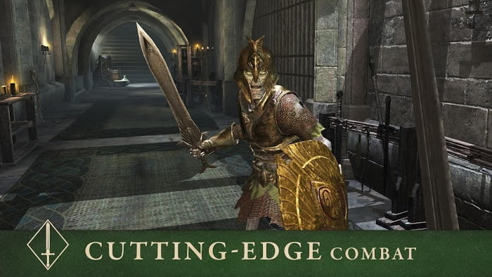 The Elder Scrolls Blades MOD God ModeDumb Enemy