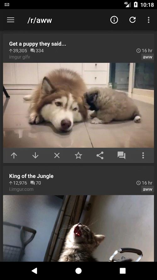 rif là bạch kim vàng vui nhộn cho Reddit (Đầy đủ / Trả phí) ** *